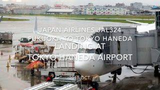 JA339J B737-800 Boeing737-846 40354/3687 2011/06〜 2014/10〜JAL