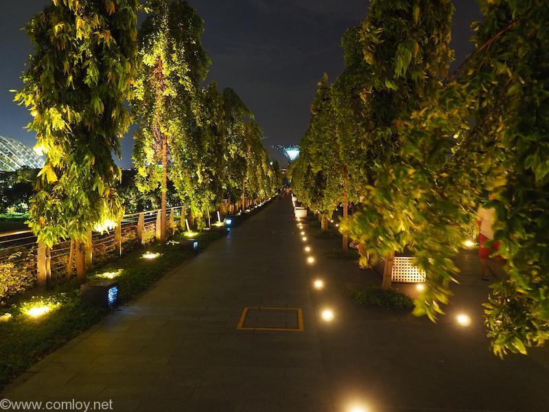 夜のLion Bridge